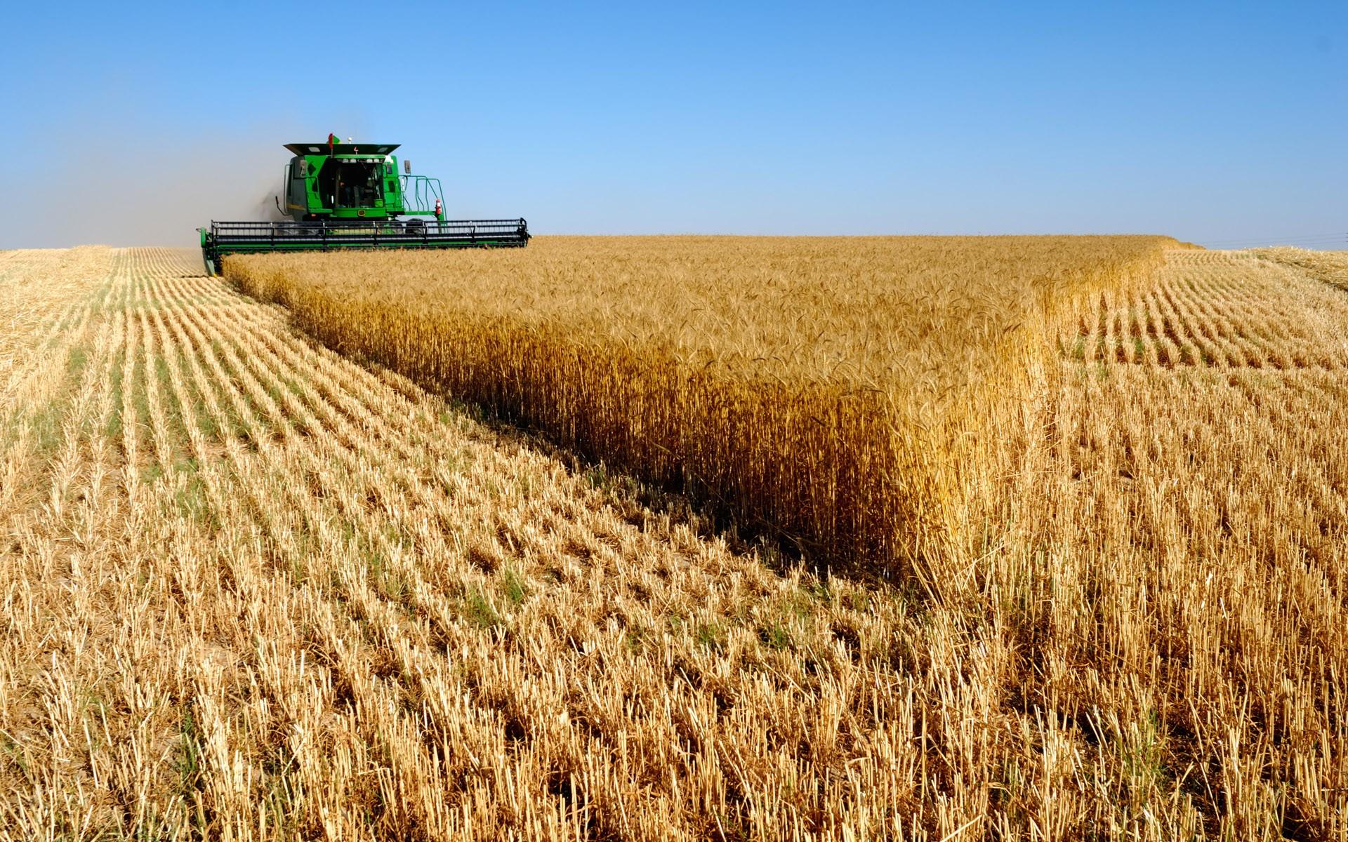 green-combine-harvester